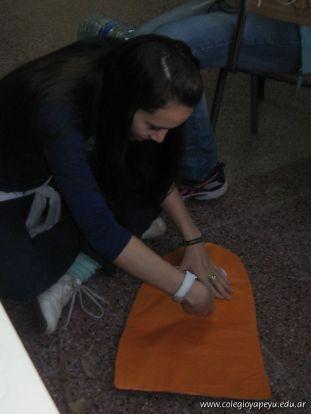 Proyecto Solidario 4
