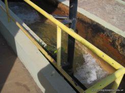 3er grado visito Aguas de Corrientes 109