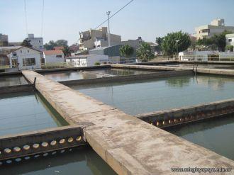 3er grado visito Aguas de Corrientes 92