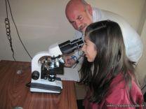 Observacion de Celulas Animales y Vegetalesl 1