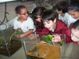 2do en el Laboratorio con Peceras 11