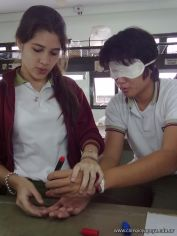 Receptores Sensoriales 8