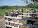 Visita a la Granja La Ilusion 2011 206
