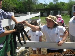 Visita a la Granja La Ilusion 2011 209
