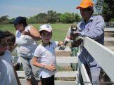 Visita a la Granja La Ilusion 2011 224