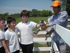 Visita a la Granja La Ilusion 2011 231
