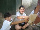 Visita a la Granja La Ilusion 2011 344