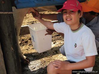 Visita a la Granja La Ilusion 2011 56