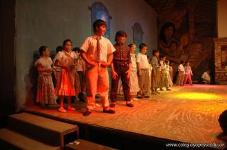 Fogon Criollo 12