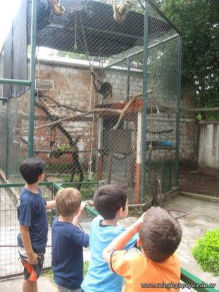 La Colonia visito el Zoologico 30