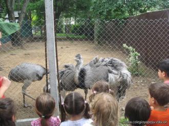 La Colonia visito el Zoologico 39