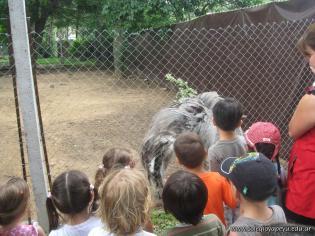 La Colonia visito el Zoologico 40