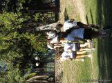 Educacion Fisica en el Parque Mitre 8