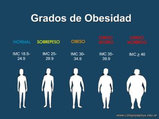 Habitos Alimentarios Saludables 1
