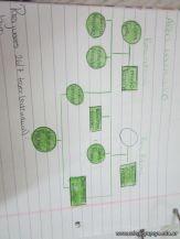 Arbol Genealogico 38