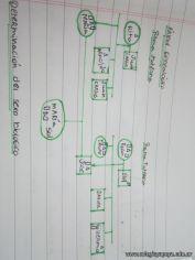Arbol Genealogico 46
