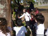 Reconociendo Arboles en el Campo Deportivo 2
