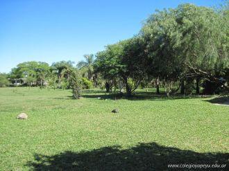 Visita al Jardin Botanico 31
