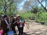 Visita al Jardin Botanico 37