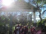 Visita al Jardin Botanico 4