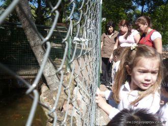 Visita al Zoologico de Salas de 3 23