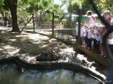 Visita al Zoologico de Salas de 3 28