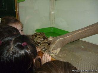 Visita al Zoologico de Salas de 3 63