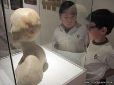 Visita al Museo 43