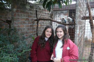 Visita al Corrientes Loro Park 14