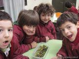 Plantas Acuaticas 3