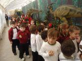 Dinosaurios en Salas de 5 27