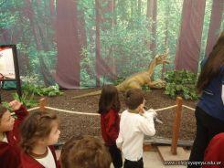 Dinosaurios en Salas de 5 33