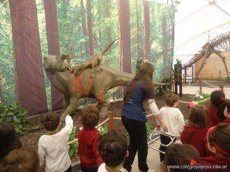 Dinosaurios en Salas de 5 34