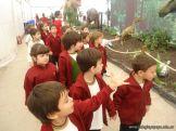 Dinosaurios en Salas de 5 36