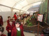 Dinosaurios en Salas de 5 38