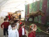Dinosaurios en Salas de 5 40