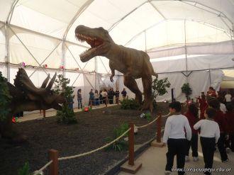 Dinosaurios en Salas de 5 42