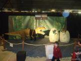 Dinosaurios en Salas de 5 48