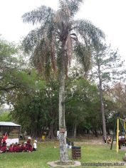 El Jardin visito la Granja La Ilusion 105