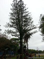 El Jardin visito la Granja La Ilusion 107
