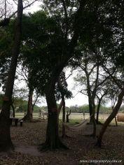 El Jardin visito la Granja La Ilusion 114
