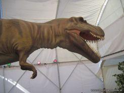 Primaria visito el Mundo Jurasico 27
