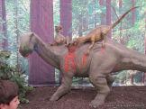 Primaria visito el Mundo Jurasico 31