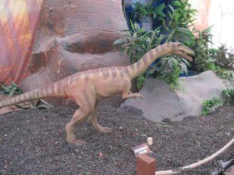 Primaria visito el Mundo Jurasico 50