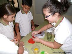 Preparamos Mermelada de Frutilla 11