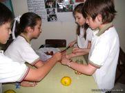 Preparamos Mermelada de Frutilla 16
