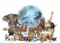 29 de abril. Día del Animal