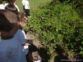 Explorando el Campo Deportivo 82