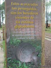 Centro de Conservacion 21