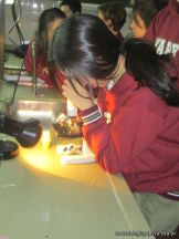 Cultivo de Microorganismos 19